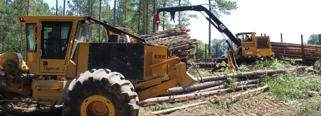 timber harvesting and logging NC VA