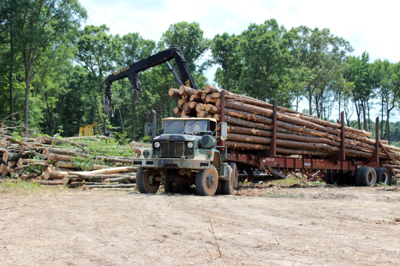 logging-job-in-granville