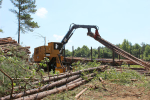 logging_3_900px